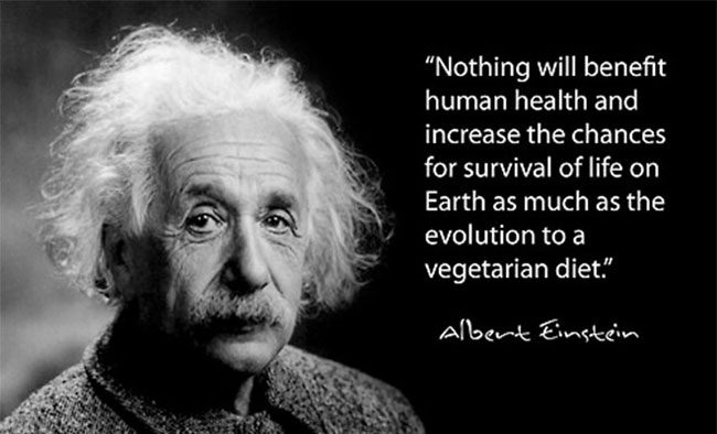 Einstein-Appetite-For-Peace